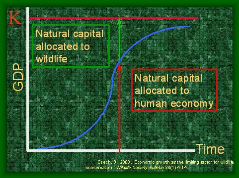 Natural capital allocation to nature and humans.JPG
