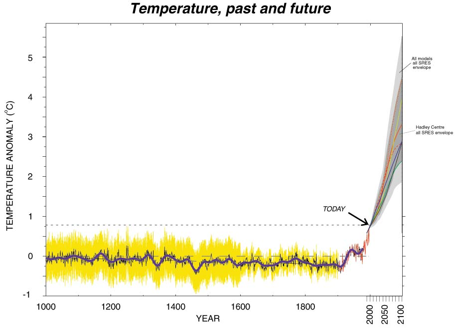 Temperature for the last 1000 years and into the future